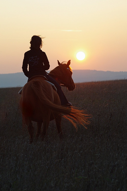 cowgirl on horse at sunset
