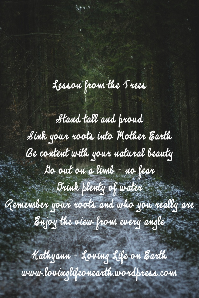 Lesson from the trees