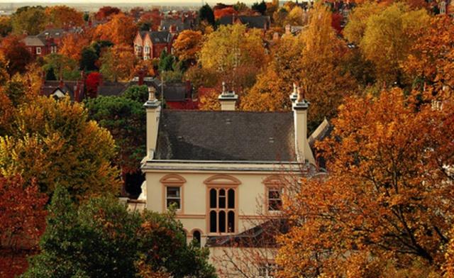 Autumn homes 2