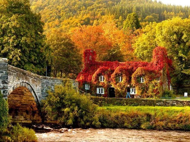 beautifule autumn home
