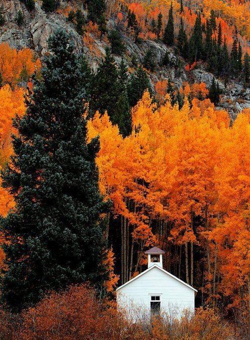 amazing church in autum forest