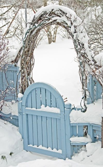 blue gate in snow