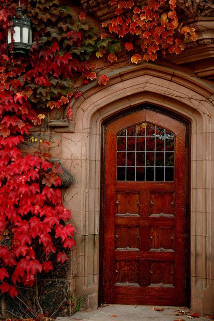 maple colored door