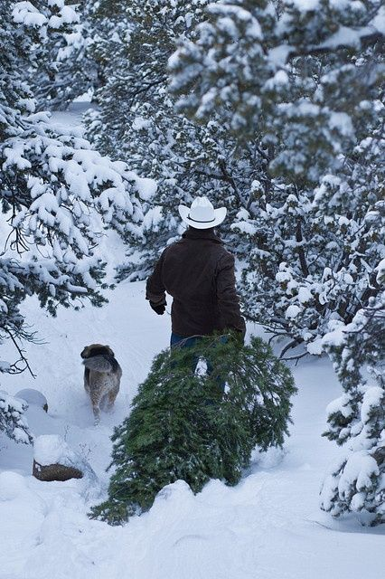 cowboy and dog in snow