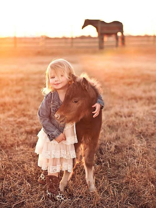 little horse for a little girl